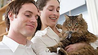 b2ap3_thumbnail_happy-couple-cat.jpg